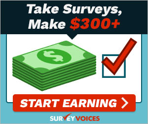 taking voice survey
