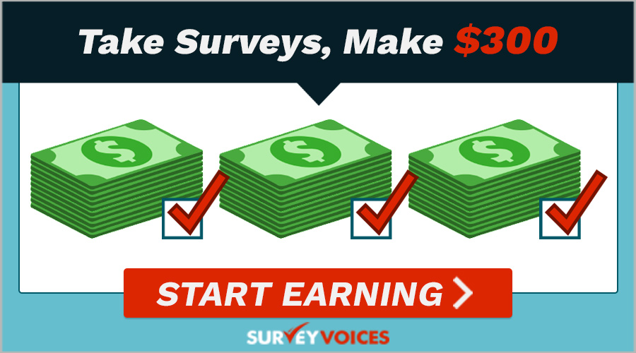 Survey Voices- New marketing research